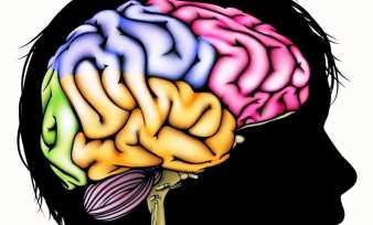 Рекомендуемая диета при сотрясении головного мозга