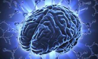 Что происходит с мозгом после спиртных напитков