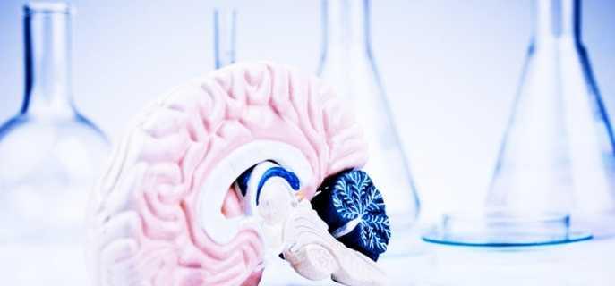Особенности, диагностика и лечение гематом головного мозга
