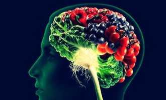 Какие продукты полезны для мозга