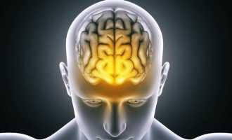 Возможности головного мозга человека