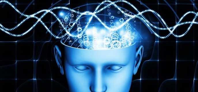 5 разновидностей волн мозга