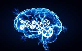 Способы развить интеллект самостоятельно