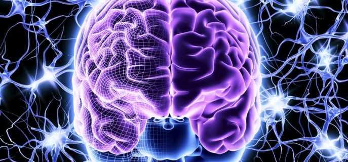 Восстановление клеток головного мозга