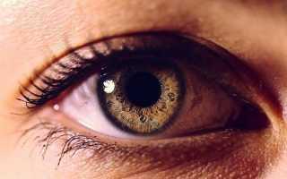 Причины появления мушек перед глазами и лечение патологии