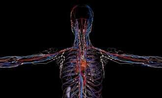 Причины, признаки и лечение плохих сосудов