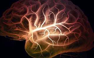 Средства и препараты для сосудов головного мозга