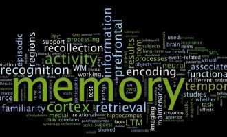 Игры и упражнения для развития памяти у детей и взрослых