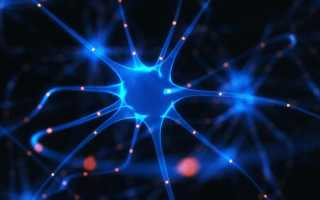 Почему развивается рассеянный склероз