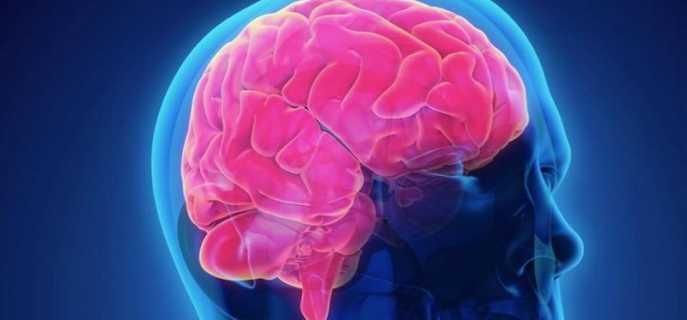 Виды повреждений головного мозга