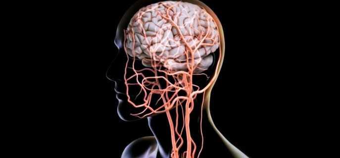 Проблемы с тонусом сосудов головного мозга
