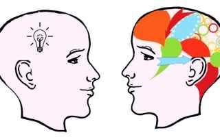 Какие уровни интеллекта распознают у людей