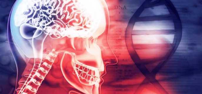 Причины, симптомы и виды неврозов