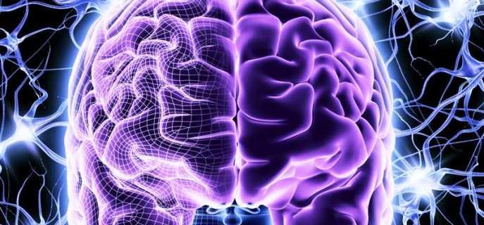 Как улучшить работоспособность мозга