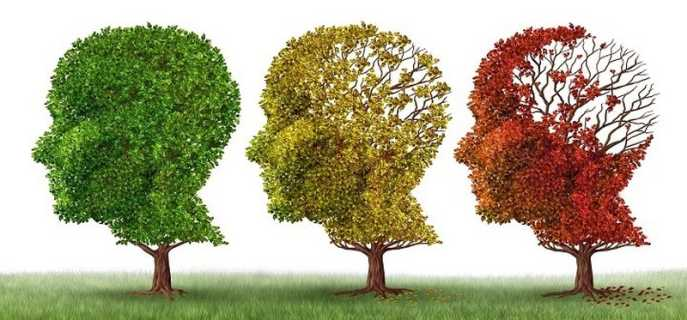 Виды и характеристики органической деменции