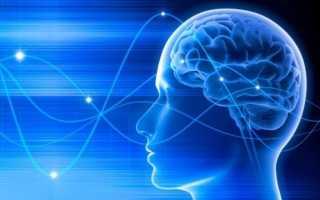Формирование мозга ребёнка
