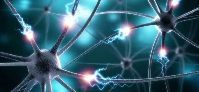 Разновидности эпилептических припадков