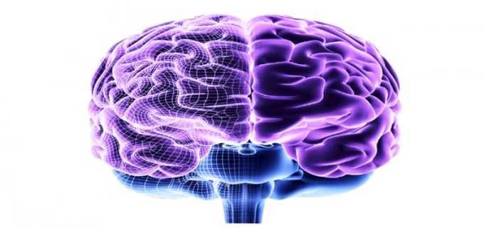 Типы дисфункций срединных структур головного мозга